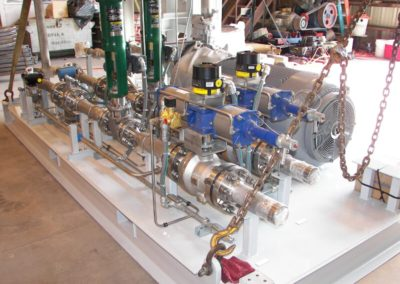Skid 012 Fuel Pump